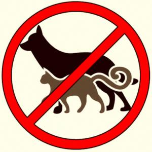 Обязательная регистрация домашних животных